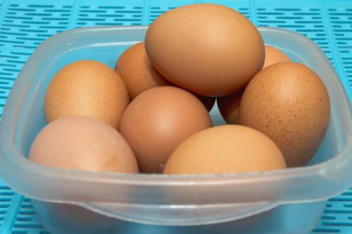 Free Stock Photo of Eggs In a Bowl