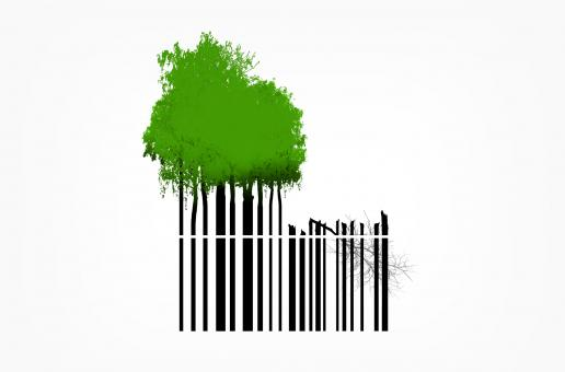 Free Stock Photo of Destruction of Natural Resources - Trees and Bar Code