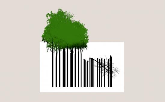 Free Stock Photo of Overconsumption of Natural Resources - Trees and Bar Code