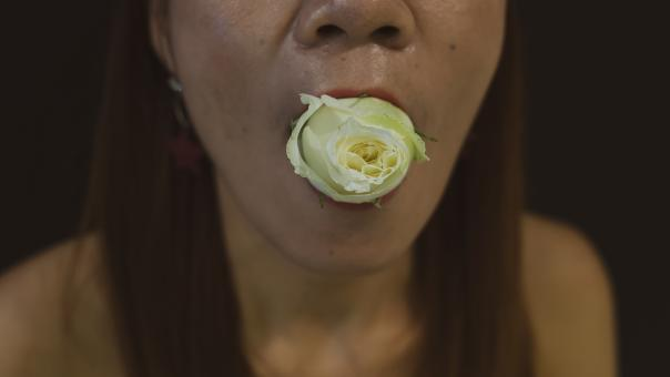 Free Stock Photo of A Woman With A Flower In Her Mouth