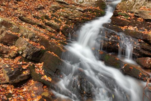 Free Stock Photo of Gee Creek Arm Falls