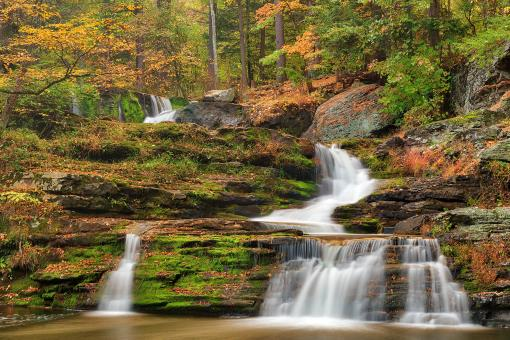 Free Stock Photo of Autumn Forest Factory Falls