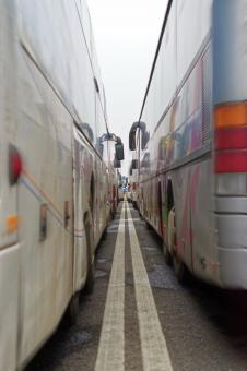 Free Stock Photo of Rows of parked buses