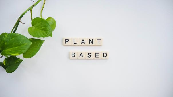 Free Stock Photo of Plant based text block and leaves