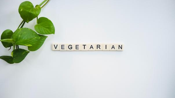 Free Stock Photo of Vegetarian Text Blocks
