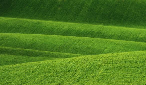 Free Stock Photo of  Rolling Hills - Grassy Hills - Agriculture