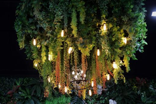 Free Stock Photo of Chandelier covered in plant greenery