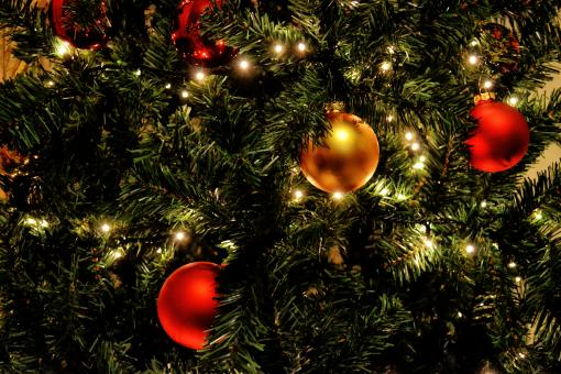 Free Stock Photo of Colored globes on Christmas tree