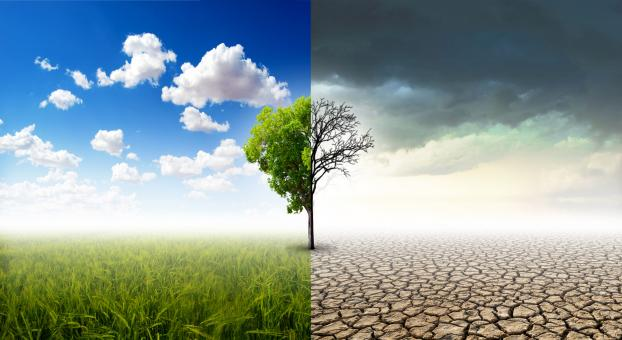 Free Stock Photo of Climate Change Concept - Healthy vs Damaged Landscape
