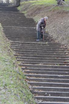 Free Stock Photo of Elderly woman descending stairs in park