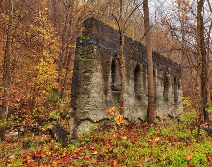 Free Stock Photo of Defiant Fall Wall