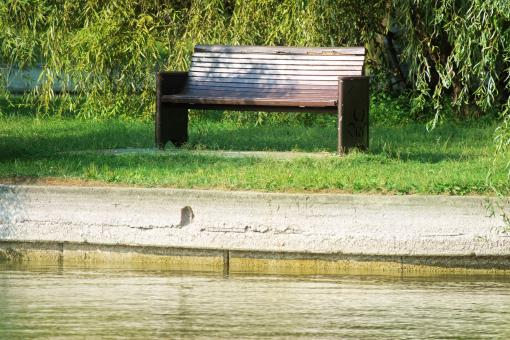 Free Stock Photo of Wooden bench on lakeshore