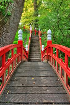 Free Stock Photo of Japanese Bridge Path - Clyne Gardens
