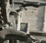 Free Photo - Gargoyles