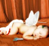 Free Photo - Cupid
