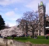 Free Photo - Otago University Students Protest