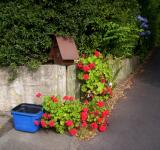Free Photo - Tweed recycling Letterbox and Geraniums