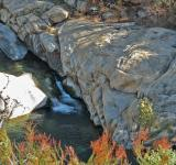Free Photo - Swimming Hole