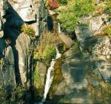 Free Photo - Waterfall in Ponderosa Pines