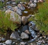 Free Photo - Peaceful River