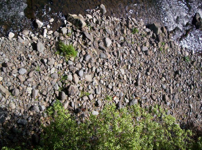 Free Stock Photo of River Bed Textures Created by Peter Alexander Robb