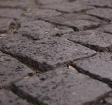 Cobble Stone Pavement - Free Stock Photo