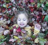 Free Photo - Fall fun