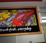 Free Photo - Fresh Fish