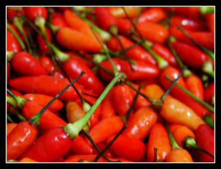 Pepper Philippine Style - Free Stock Photo