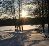 Free Photo - Winter sun