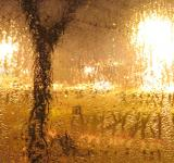 Free Photo - Its rainning outside