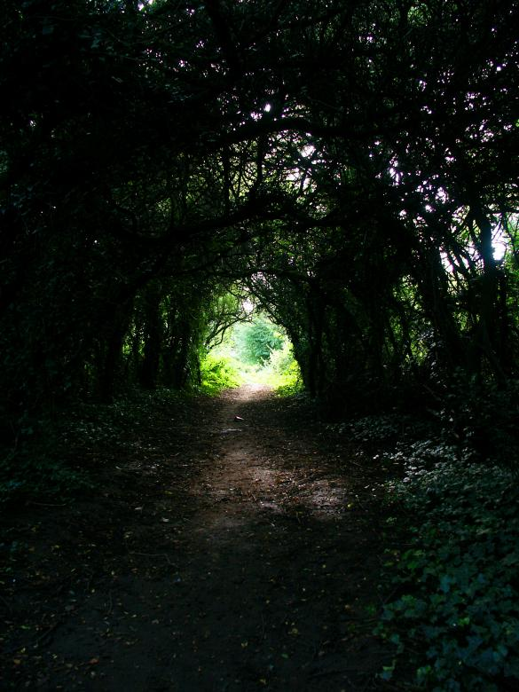 Free Stock Photo of There is Light at the end of the tunnel! Created by chris raven