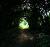 Free Photo - There is Light at the end of the tunnel!
