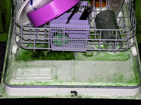 Disgusting Dishwasher in Abandoned Proje - Free Stock Photo