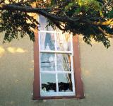 Free Photo - Nellie's Window