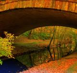 Free Photo - Fall comes to the river