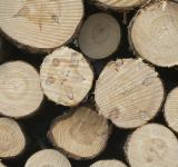 Free Photo - Pile of wood poles