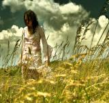 Free Photo - We shall meet where there is no sorrow..