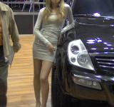 Free Photo - A pretty girl and a Rexton