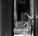 Free Photo - Bicycle blues