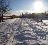 Free Photo - Snowy Path