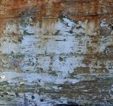 Free Photo - Old wood surface