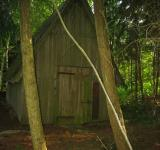 Free Photo - Shed in the woods