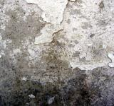 Free Photo - Grunge wall surface