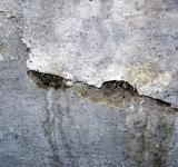 Free Photo - Cracked wall texture