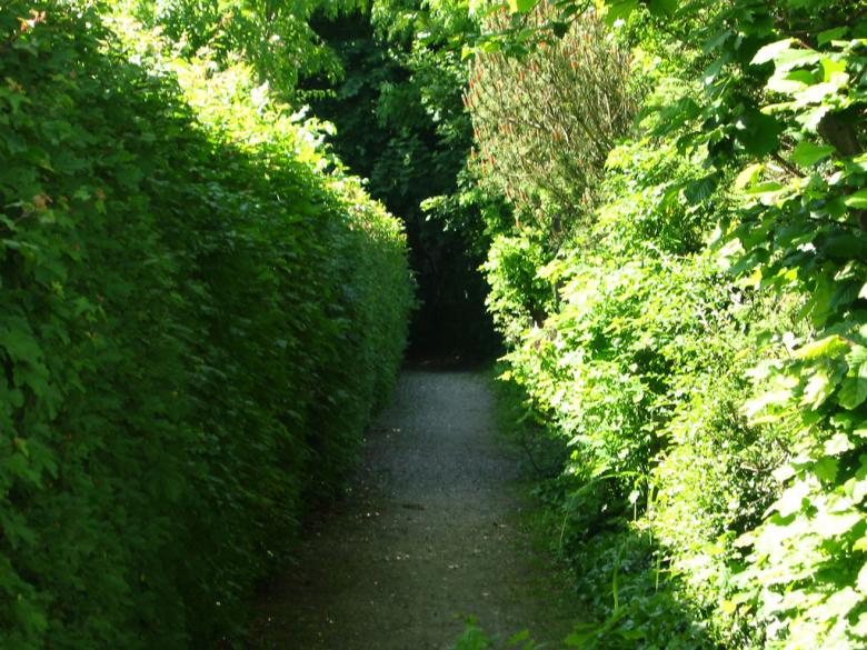 Free Stock Photo of Garden Path Created by ozonegfx