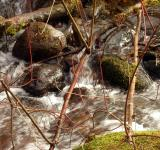 Free Photo - Water stream