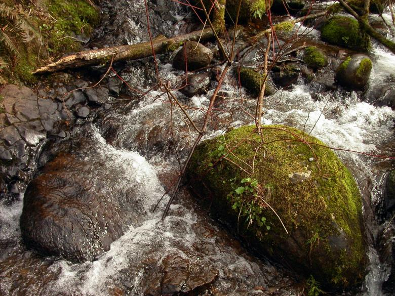 Free Stock Photo of Water stream Created by collin votrobeck