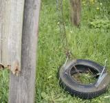Free Photo - Tire swing