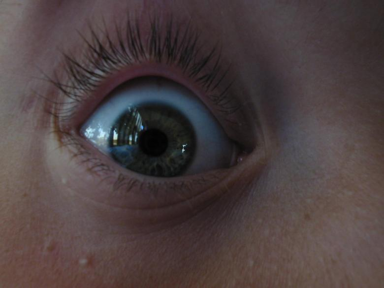 Free Stock Photo of Eye Created by prime
